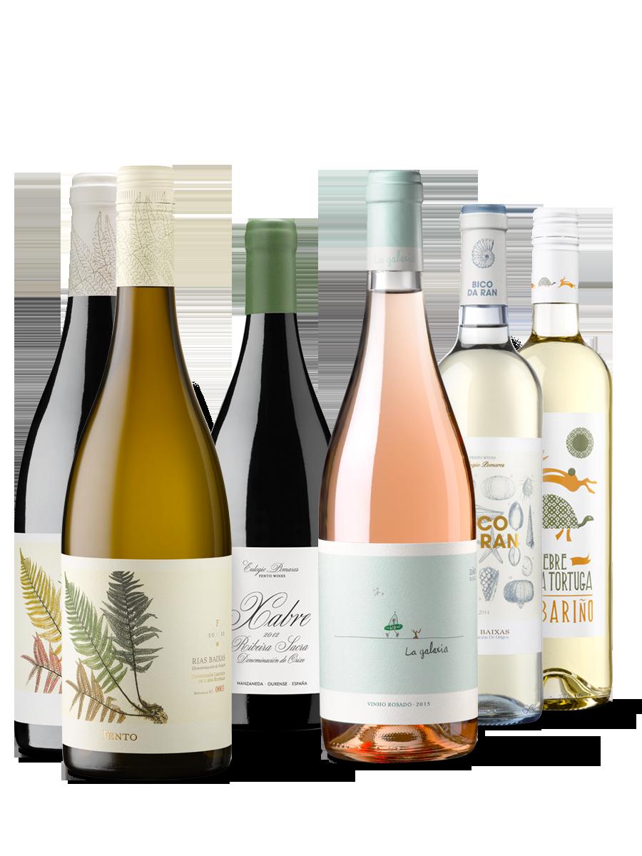 Fento Wines